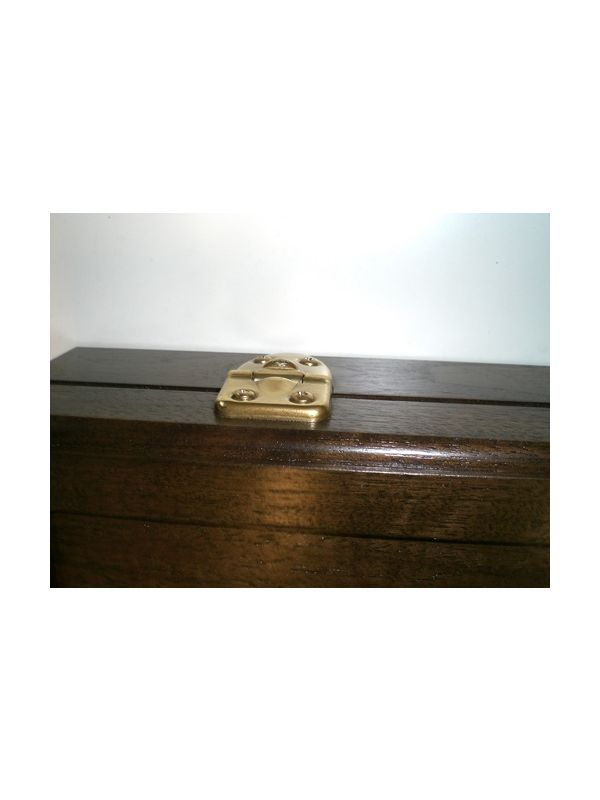 Exposed Brass Hinges